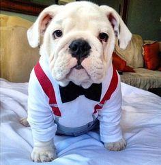 OMG, SO cute!!!