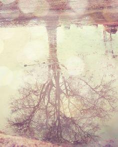 Photographers Eye Inspiration Indie Photography, Tree Photography, Landscape Photography, Bohemian Wall Decor, Bohemian Art, Photo Tree, Tree Print, Abstract Landscape, Fine Art