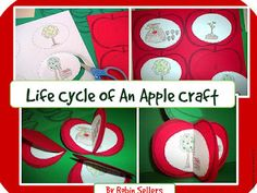 Johnny Appleseed Apple life cycle craft by Robin Sellers