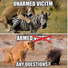 Men's Humor Volume 1 Men's Humor Volume 1 - More funny pictures for guys here. Pro Gun, Funny Memes, Hilarious, Liberal Logic, Military Humor, Military Guns, Gun Rights, Conservative Politics, Truth Hurts