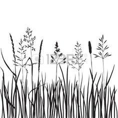 wild grass: black grass silhouettes, hand drawn wild cereals, meadow wild…