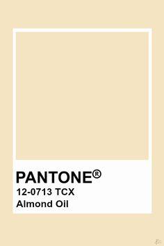 Pantone Almond Oil Pallette, Colour Pallete, Colour Schemes, Color Trends, Pantone Color Chart, Pantone Colour Palettes, Pantone Colours, Pantone Swatches, Color Swatches