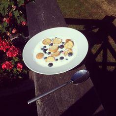 Hjemmelavet koldskål med blåbær