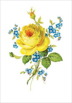 Rose Flower Wallpaper, European Paintings, China Painting, Decoupage Paper, Retro Floral, Retro Art, Rose Design, Shops, Botanical Prints