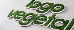 Logo Végétal Stabilisé