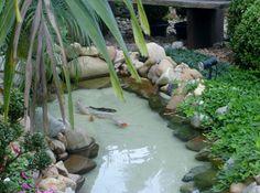 Dicas-lagos-cascatas-jardim                                                                                                                                                                                 Mais