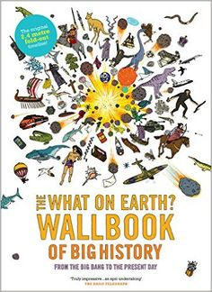 The What on Earth? Wallbook of Big History: A Timeline from the Big Bang to the Present Day: Amazon.co.uk: Christopher Lloyd, Andy Forshaw: 9780956593603: Books