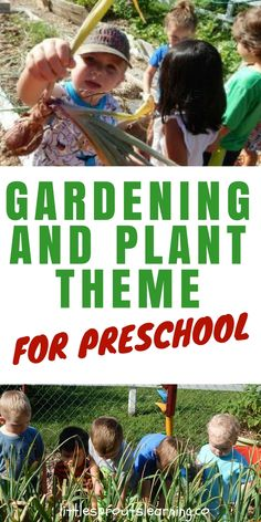 PRESCHOOL PLANT THEME: Teaching a plant theme for preschool is a great way to teach kids lots of science as well as give them sensory experiences that are hard to get other ways. Kids love to watch things grow. You can make your theme as simple as germinating a few seeds or take it all the way to a huge garden.