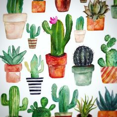 I love cactusses!!  Last weekend I have spent some time with T in a garden center shopping for cacti...And it was hilarious fun because of all of them kept stinging me..  Allright T was laughing more then I did.. #cactus #cacti #cactuslove #cactuslover #succulentsofinstagram #cactilove