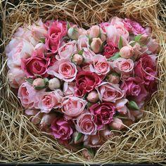 Pure Heart Rose | ピュアハートローズ