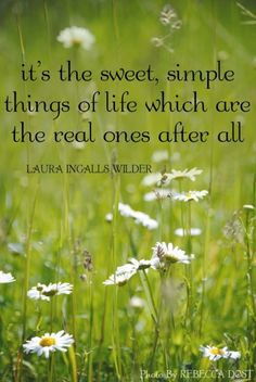 A simple life is a beautiful life took a while to for Laura dunn minimalist living now