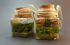 Gillyweed Harry potter potion