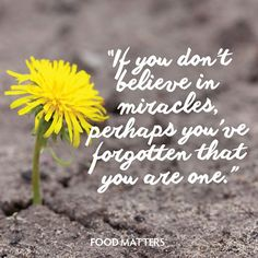 Believe it everyday!   www.foodmatters.tv #foodmatters #FMquotes