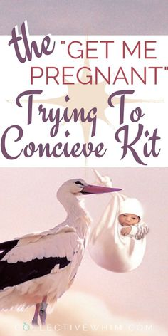 Thinking about expanding your family? This trying to conceive kit will help you do just that! With 5 kits to choose from you'll be all set to start your ttc journey. Pregnancy tests, ovulation tests, Trying to get pregnant, trying for a baby, tips on getting pregnant, howto get pregnant, trying to conceive help.