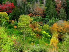 Eatwoodhill Arboretum, Gisborne