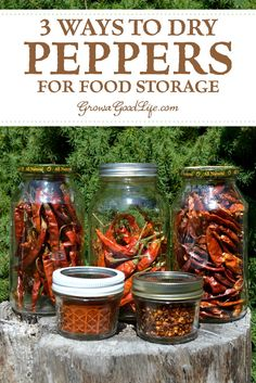 3 Ways to Dry Peppers for Food Storage: Drying is an excellent way to preserve peppers. Dehydrating removes the moisture and concentrates the flavor and heat of the peppers. Turn that bounty into a pantry staple that will add lots of flavor to your meals. Antipasto, Dehydrator Recipes, Food Processor Recipes, Best Food Dehydrator, Dried Peppers, Bbq, Dehydrated Food, Stuffed Sweet Peppers, Drying Herbs