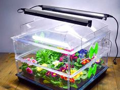 https://www.quickcrop.co.uk/product/60cm-light-and-support-kit-for-vitopod-propagator #vitopod #propagator #seedlings #growlight
