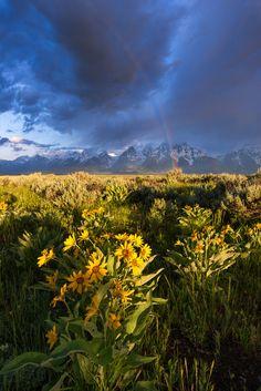 Rainbow over the Tetons as thunderstorms pass through during sunrise (Antelope Flats Wyomnig U.S.) [OC] [4912x7360]