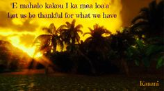 Let us be thankful for what we have. - Hawaiian saying Hawaiian Phrases, Hawaiian Sayings, Hawaii Language, Mahalo Hawaii, Hawaii Hawaii, Hawaii Quotes, Proverbs Quotes, Hawaiian Tattoo, Interesting Quotes