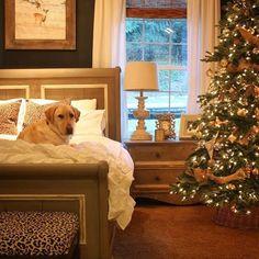 ❄️ O holy night ❄️ #christmas #christmastree #christmastime #christmasgift #christmasgifts #F4F #L4L