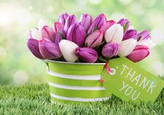 Say Thanks With Lovely Flower Wallpaper,HD Wallpapers,Pic,Pictures