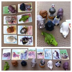 Animal Matching Activity: Students will match animals to the correct card/habitat.