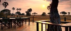 Warm sunsets from the wooden deck Wooden Decks, Camps, Outdoor Furniture, Outdoor Decor, Tanzania, Lodges, Savannah Chat, Sunsets, Remote
