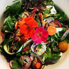 Miss Daisy's little love salad for the day. So much local produce in this little baby and most of all the first of my nasturtiums. This year I have fallen in love with making salads but by far this one is my favourite. X #daisydining #daylesford #catering #daylesfordcatering #bespokecatering #bespoke #traditionalcooking #localproduce #salads #cleaneating #healthyfood #healthyeating #vegan #glutenfree #seasonalproduce #seasonalcooking #food #foodpics #foodstyling #foodpresentation…