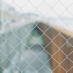 遠い日のノスタルジア。 。 . . .  #届かぬ想い #フェンス  #鎌倉高校前 #鎌倉  #kamakura #japan #東京カメラ部 #tokyocameraclub  #写真好きな人と繋がりたい #フィルム #フィルム部 #フィルム写真 #フィルムカメラ #フィルム普及委員会  #フィルムに恋してる #Canon #A1 #canona1 #filmcamera #filmphoto #FUJIFILM #PRO400H  #カノプリ #IGersJP  #instagramjapan  #team_jp_ #RECO_ig  #hueart_life #indies_gram