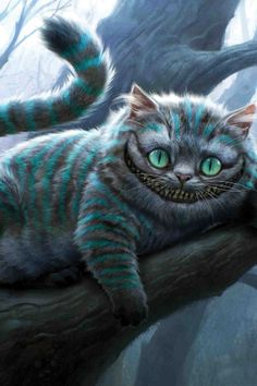 Cheshire Cat! I want to find a fluffy doll version of him with his awesome colors!!!