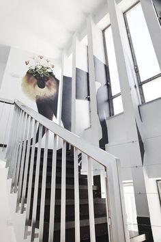 Vivarium, instalación de Juliana de Luca y Angelica Eriksson para Casa Decor 2013
