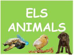 ELS ANIMALS presentació molt complerta i entenedora Animal Projects, Habitats, Natural, Valencia, Ideas Para, School, Animals, Animal Science, Cooperative Learning