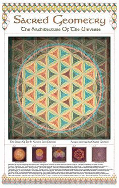 Sacred Geometry Poster: The Flower Of Life