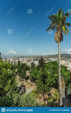 Photo about Malaga.Panoramic city view from the top of Gibralfaro fortress. Vertical view with copy-space. Image of skyline, spain, outdoors - 158578578 Pictures For Sale, Malaga, City Photo, Spain, Skyline, Outdoors, Stock Photos, History, Image