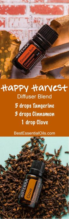 Happy Harvest doTERRA Diffuser Blend essential oil blends doterra doTERRA Clove Essential Oil Uses with DIY and Food Recipes - Clove Essential Oil, Essential Oil Diffuser Blends, Essential Oil Uses, Doterra Essential Oils, Natural Essential Oils, Doterra Diffuser, Yl Oils, Diffuser Recipes, Aromatherapy Oils