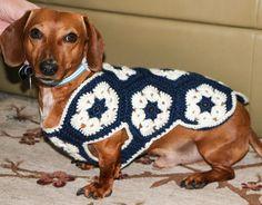 Dachshund Jumper Knitting Pattern 12 Dog Sweaters And Other Knitting Patterns For Pups. Dachshund Jumper Knitting Pattern 12 Dog Sweaters And Other Kn. Crochet Dog Clothes, Girl Dog Clothes, Crochet Dog Sweater, Dog Sweater Pattern, Jumper Knitting Pattern, Sweater Patterns, Small Dog Coats, Small Dog Sweaters, Dachshund Sweater