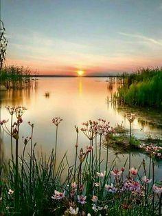 Lake and sunset - 望寒煙看碧水 寂寞晨光透 漫片湖海添愁绪 盡数花兒蕊