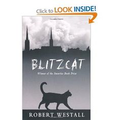 Blitzcat - told from the viewpoint of a cat, it is nevertheless the harrowing story of living through the Coventry blitz in World War 2