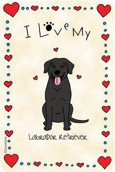 Labrador Retriever Black, I Love My