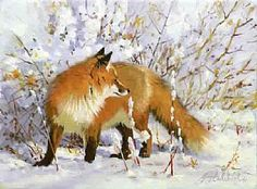 """""""Fox in Snowfield"""" - x """"Fox in Snowfield"""" - Canine Wild Canine Paintings Wolf and Fox Artwork Wildlife Paintings, Wildlife Art, Animal Paintings, Fox In Snow, Fox Painting, Fox Dog, Fox Illustration, Inspirational Artwork, Animal Sketches"""