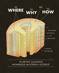 The Where, the Why, and the How: 75 Artists Illustrate Wondrous Mysteries of Science: Matt Lamothe, Julia Rothman, Jenny Volvovski, David Ma...#Books #Science #Art