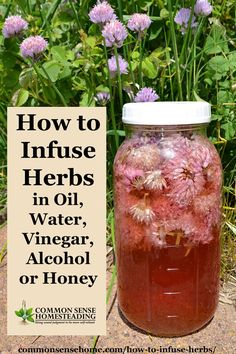 How to infuse herbs