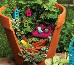Funny pictures about Broken Pots Turned Into Beautiful Fairy Gardens. Oh, and cool pics about Broken Pots Turned Into Beautiful Fairy Gardens. Also, Broken Pots Turned Into Beautiful Fairy Gardens photos. Fairy Garden Plants, Gnome Garden, Garden Pots, Garden Web, Garden Birds, Balcony Garden, Fairy Pots, Potted Garden, Planter Garden