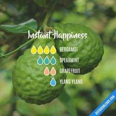 Instant Happiness - Essential Oil Diffuser Blend