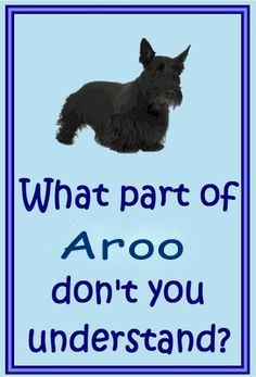 You understand grrr why not aroo?