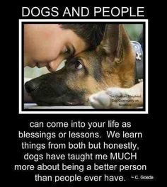 My dog is training me well to be a better person.