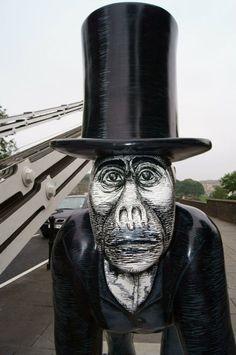 Gorilla Hunt, Bristol