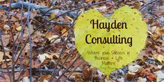 Dental Marketing Ideas for March | Hayden Consulting - Where Your Success in Business and Life Matters!
