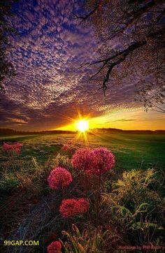 #LOL: Amazing Photography Of Sunset