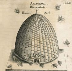 Free bee skep print  We love our bee's and have local honey at Leafs Treehouse Antique & Collectables Mall